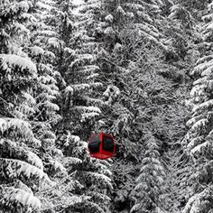 Les Gets Ski lift red cabin with black and white snow covered trees. Copyright, Nina Clare Photography, Les Gets, Morzine and Portes du Soleil metal images buy direct on the website: nina clare photography. Snow Covered Trees, Snowy Trees, Ski Lift, French Alps, The Locals, Skiing, Cabin, Black And White, Website