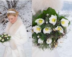 Ein Strauß aus Christrosen ist allein der Winterbraut vorbehalten. Wer will da noch rote Rosen?