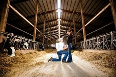 This would be my proposal...surrounded by moo moo's