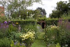 cottage garden photos - Google-haku