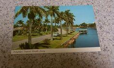 Vintage postcard. Etsy listing at https://www.etsy.com/listing/231748015/vintage-florida-postcard-vintage