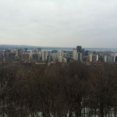 #greatview of #hamont from the top of the #escarpment #SteeltownStomp @escprj