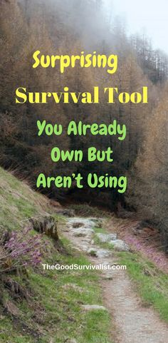 Many people all over the world have this survival tool, but are not even aware that it has a capability that they are totally unaware of. See what it is here:  http://www.thegoodsurvivalist.com/a-totally-surprising-survival-tool-you-already-own-but-arent-using/