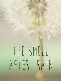 El olor despúes de la lluvia.
