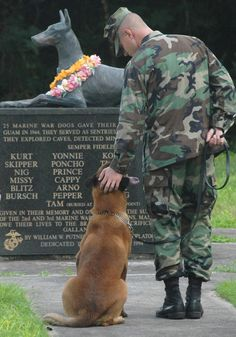 Monument to Doberman, Military Working Dog (MWD), World War II Memorial, War Dog Cemetery, Naval Base Guam - Military Working Dogs (MWDs in military parlance) have been part of the US forces for over 100 years with dogs fighting alongside soldiers as far back as the Civil War and WWI.