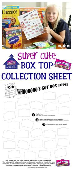 Super Cute Owl Box Top Collection Sheet - Butter With A Side of Bread