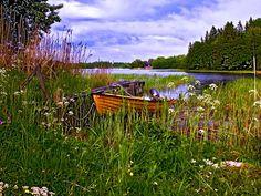 Very Swedish summer. So romantic.. Photographer Marita Toftgard