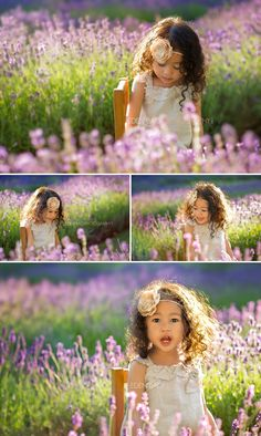 Vancouver BC Child Photographer Eden Bao   Angeline in the Lavender Fields - Vancouver BC Maternity Newborn Baby Photographer   Eden Bao Pho...