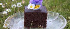 Hier findest Du ein Rezept für gesunde fluffige Schokoladen Brownies fettfrei! Diese sind milchfrei und eifrei, also vegan.