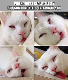 Lol….We all know that feeling  #Funny #Pictures