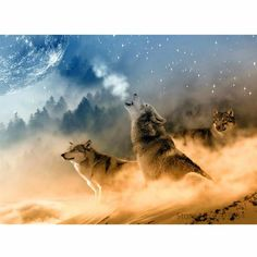 DIY Howling Wolf Painting By Numbers Kit Meditation Musik, Foto Picture, Two Wolves, Wolf Painting, Neville Goddard, Tableau Design, Wolf Moon, Wolf Howling, Moon Art