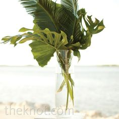 Palm Ceremony Arrangement?