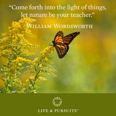 """Come forth into the light of things, let nature be your teacher."" - William Wordsworth"