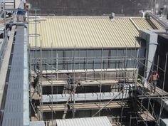 Plaster repairs - Void above Maori court