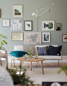 Gallery wall decor in a modern living room featuring warm gray (greenish) walls and green, blush, and black and white artwork - Gallery Art Wall Ideas