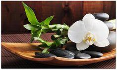 Méditation : les techniques simples pour en faire un réflexe. - Le site de Maître Zen