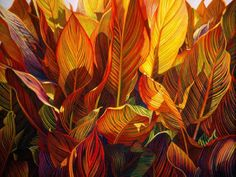 """Red Ted Cannas . Watercolor . 22x30"""" . Carol Ann Schrader"""