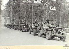 WWII Jeeps