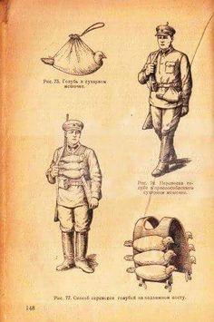 Russian Pigeon Assault Vest WW1.