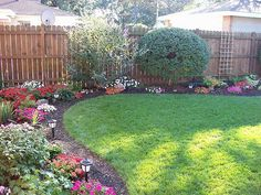 Irregularly shaped beds in the corners of the backyard - choose 3-4 plants and vary throughout.