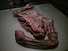 Old Croghan Man (Seanfhear Chruacháin in Irish) is the name given to a well-preserved Iron Age bog body found in an Irish bog in June 2003. The remains are named after Croghan Hill, north of Daingean, County Offaly, near where the body was found.
