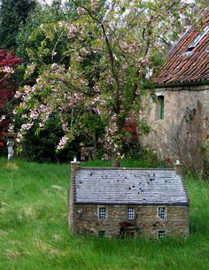 A fairy house in Falkland. (My photo and pinning it because it is doing the rounds on Pinterest uncredited.)