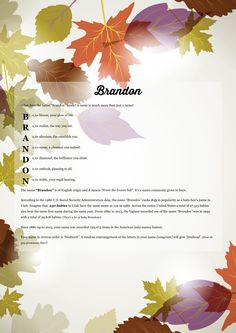The #namemeaning of #Brandon using Maple Leaves from the project pack Nature. Unique #giftideas and #personalizedgifts for #babynames