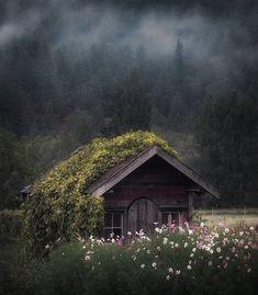 Cozy little cabin in Skagit Valley, WA - Cozy Places, Cozy Interior Design Concepts and Decor Ideas Ideas De Cabina, Beautiful Homes, Beautiful Places, Amazing Places, Wonderful Places, Beautiful Flowers, Beautiful Buildings, Amazing Photos, Beautiful Landscapes