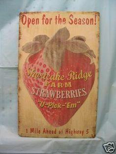 images if strawberry kitchen Strawberry Kitchen, Strawberry Farm, Strawberry Patch, Strawberry Cheesecake, Kitchen Themes, Kitchen Signs, Kitchen Decor, Strawberry Decorations, Strawberry Fields Forever