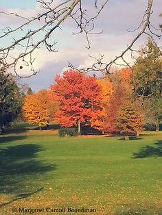 Golf Course Beacon, Beechwood Golf Course, LaPorte, IN | Margaret Carroll Boardman