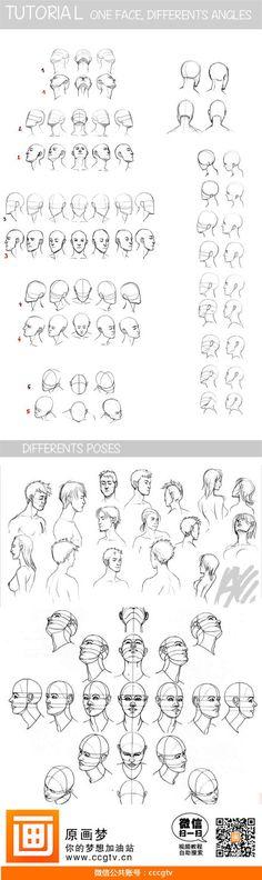 头部各种角度的透视绘画教材,非常实用!更...@方糖人参采集到人体(58图)_花瓣