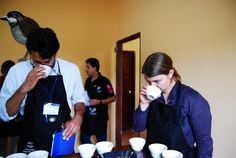 Cupping bei APECAP  mehr Informationen auf der Five Roasters-Homepage www.fiveroasters.de/blog/ecuador-august-2014