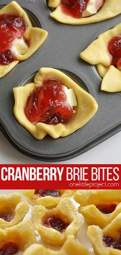 These cranberry brie bites taste SO GOOD and you only need 3 ingredients to make. These cranberry brie bites taste SO GOOD and you only need 3 ingredients to make them! Brie Appetizer, Easy Appetizer Recipes, Yummy Appetizers, Appetizers For Party, Appetizers For Christmas Party, Christmas Desserts, East Appetizers, Easy Christmas Recipes, Easy Thanksgiving Appetizers