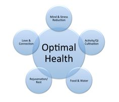 Start Having Optimal Health #health #fitness http://rootandsprouts.com