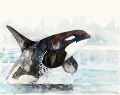 Watercolor Orca and Girl Painting  Print titled