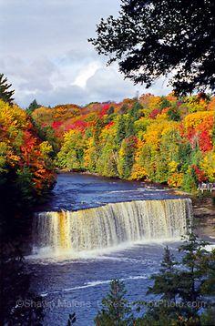 Autumn at Tahquamenon Falls State Park, Upper Peninsula, Michigan Fall Photos, Nature Photos, Michigan Travel, Michigan Usa, Upper Peninsula, Miguel Angel, Beautiful Waterfalls, Lake Superior, Vacation Spots