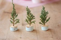 How to make itty bitty Christmas trees -- cute decor you can put up anywhere, especially in small spaces this holiday!
