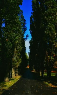 An entrance...❤