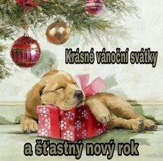 Sleepy Pup by The Macneil Studio Framed Art Christmas Puppy, Noel Christmas, Christmas Animals, Vintage Christmas Cards, Xmas Cards, Christmas Crafts, Christmas Decorations, Christmas Ornaments, Christmas Scenes