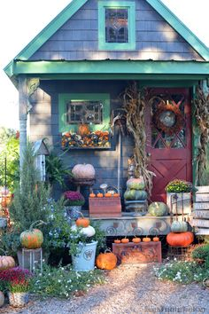 Potting Shed decorated for fall with pumpkins, mums, bittersweet vine and corn stalks | homeiswheretheboatis.net