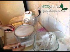 Repelente natural de plagas hecho con Ajo, Cebolla, Clavo y Hoja de Laurel - YouTube