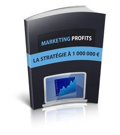 Marketing Profits - La Stratégie à 1 million d'euros !