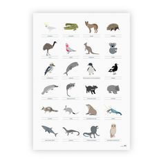Australian animal poster - $16.50 for A3 poster - two little ducklings. Saw t at Finders Keepers Market