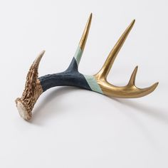 easy to paint this---Navy & Gold Antler in House+Home HOME+DÉCOR Room Décor Vases+Accents at Terrain