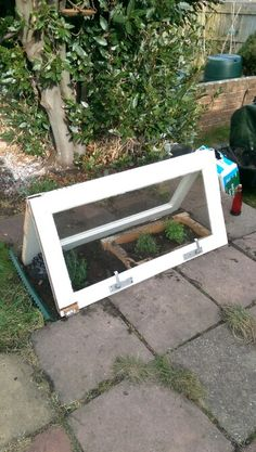 Coldframe from two doors.