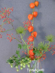 Deco Floral, Floral Design, Diy Flowers, White Flowers, Chinese Lanterns Plant, Contemporary Garden Design, Bouquet, Decoration Table, Flower Power