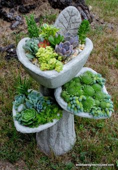 A lovely succulent planter by Woodward Greenhouses . Succulent Gardening, Garden Planters, Garden Art, Container Gardening, Garden Design, Succulents In Containers, Cacti And Succulents, Planting Succulents, Planting Flowers