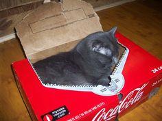 Socks laying in a coke box now, lol