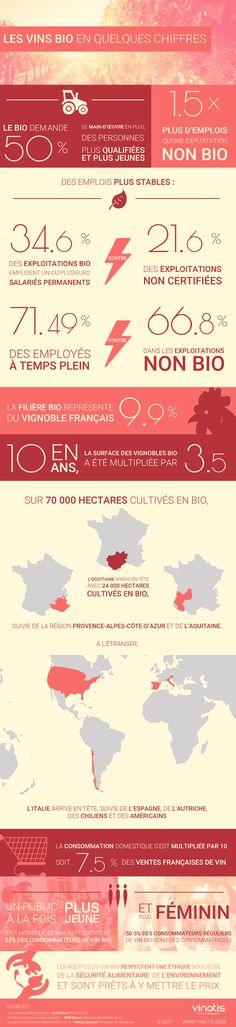 Filière vin bio : Infographie 2017