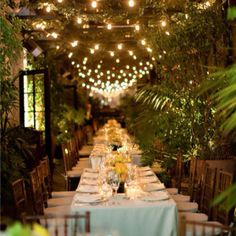Place setting.  i've always wanted a pergola with vines and lights.  So dreamy and romantic